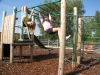 Monkey Bars